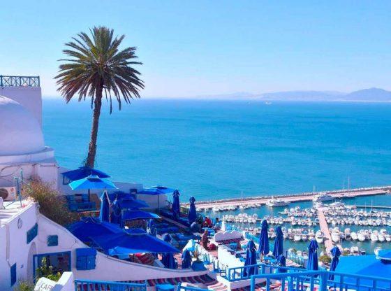 Tunez. Foto tomada de www.centraldereservas.com